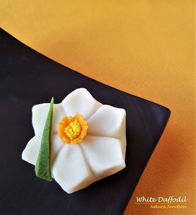 W Daffodil4
