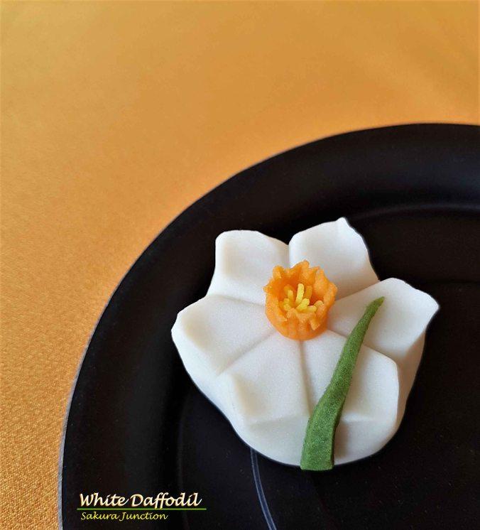 W Daffodil5