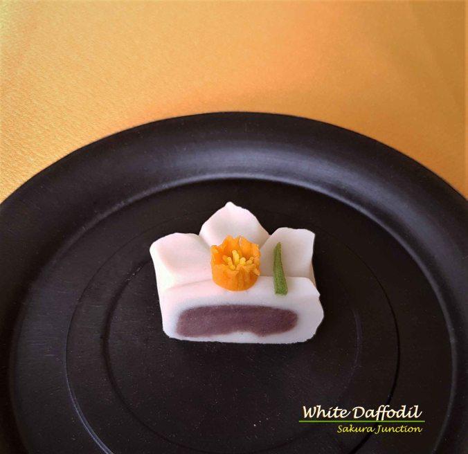 W Daffodil6