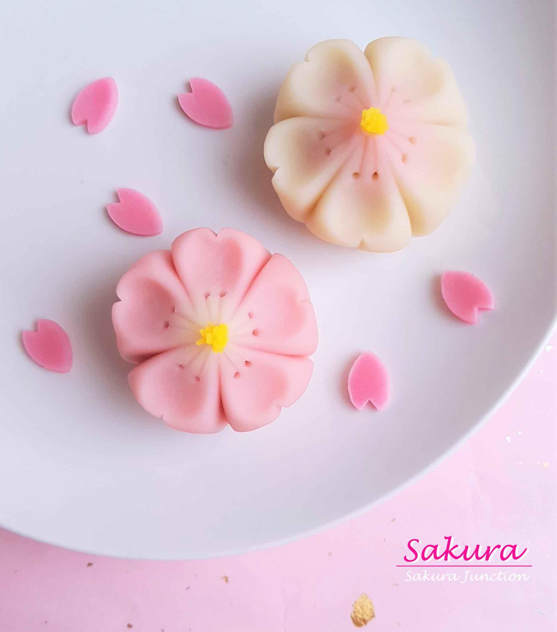 Sakura 19-3
