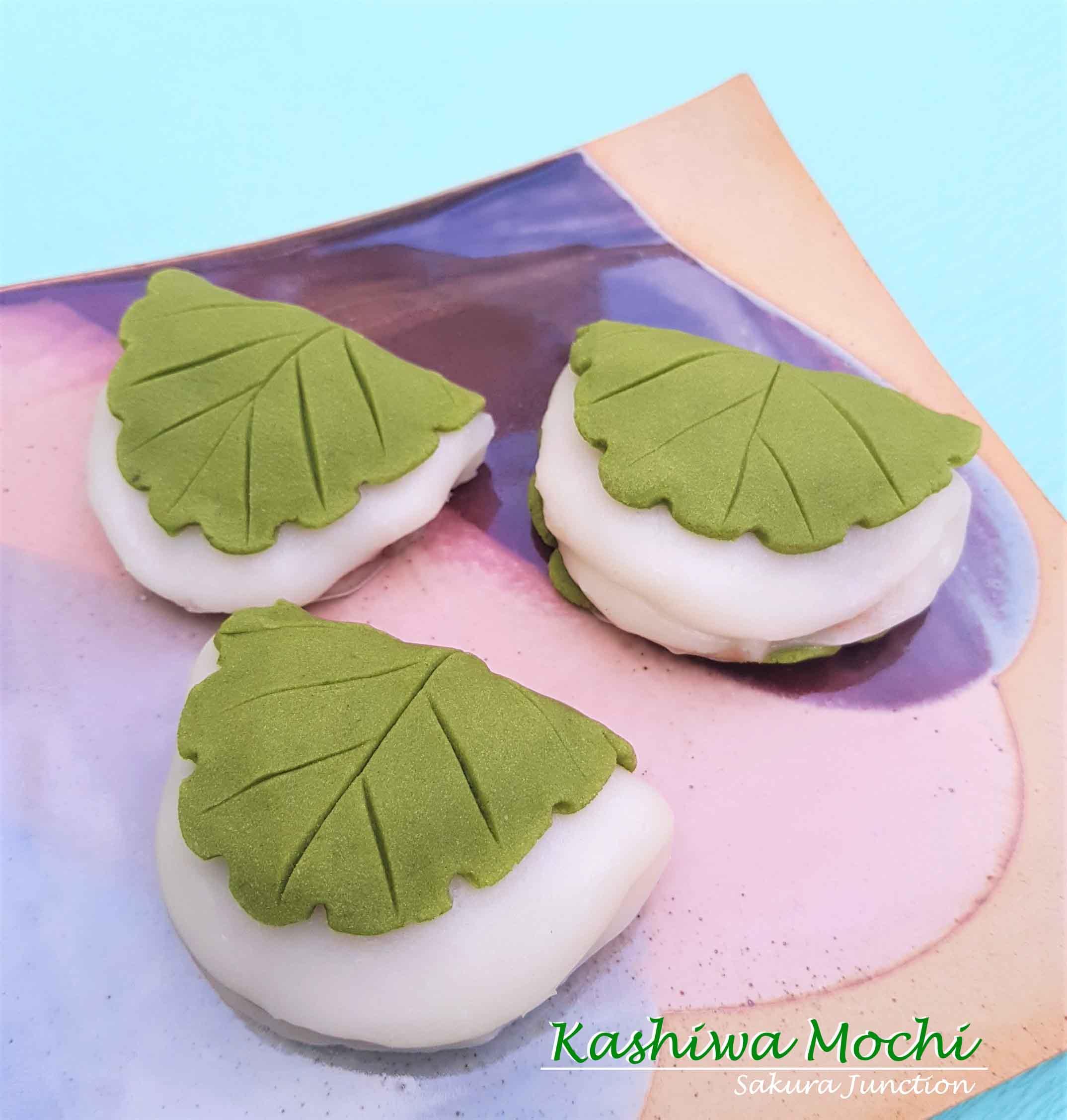 KashiwaMochi1