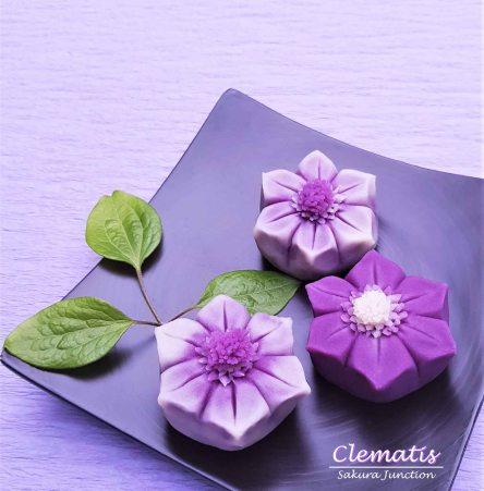 Clematis 19-1