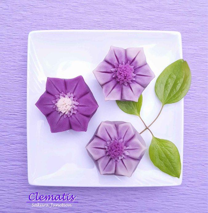 Clematis 19-4