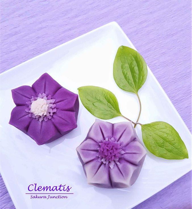 Clematis 19-5