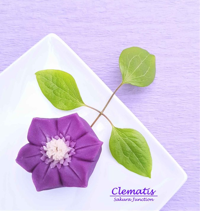 Clematis 19-6