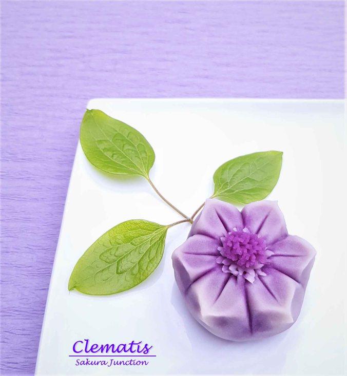 Clematis 19-8