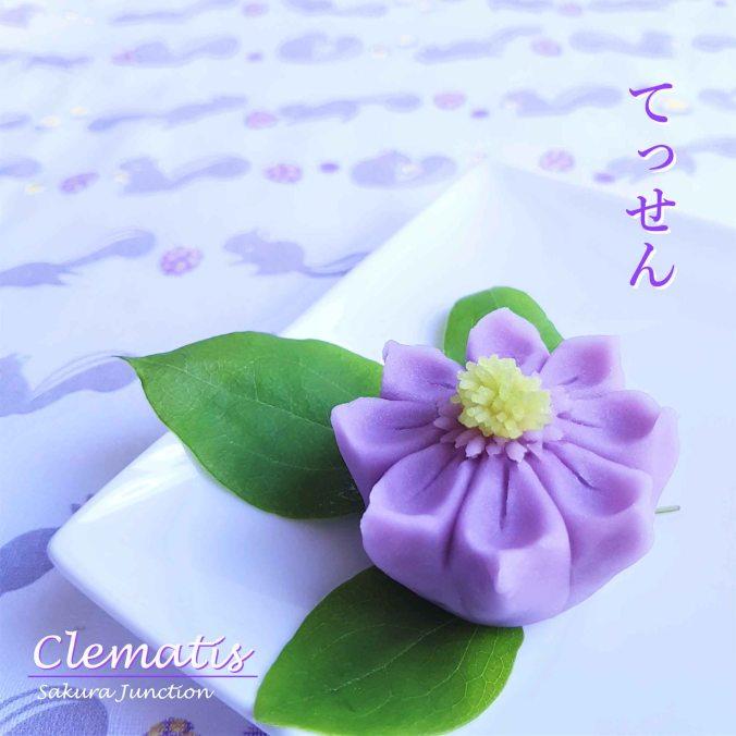 clematis20-2