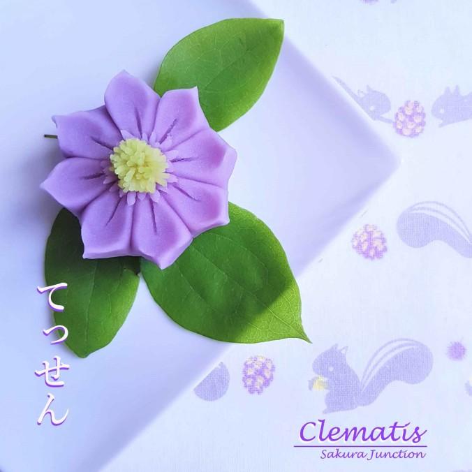 clematis20-3p