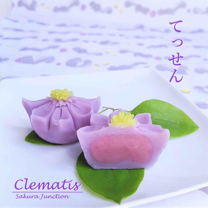 clematis20-4