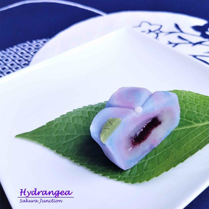 Hydrangea20-3